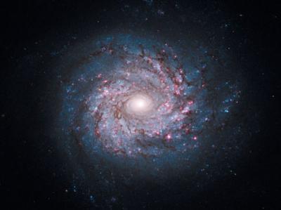 渦巻(き)銀河(うずまきぎんが)の意味 - goo国語辞書