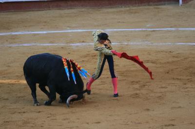 マタドール【(スペイン)matador】の意味